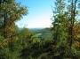 Scenic View!